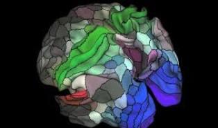 الدماغ، الذهن والتعلم مقاربة معرفية- الأستاذ الدكتور هشام خباش